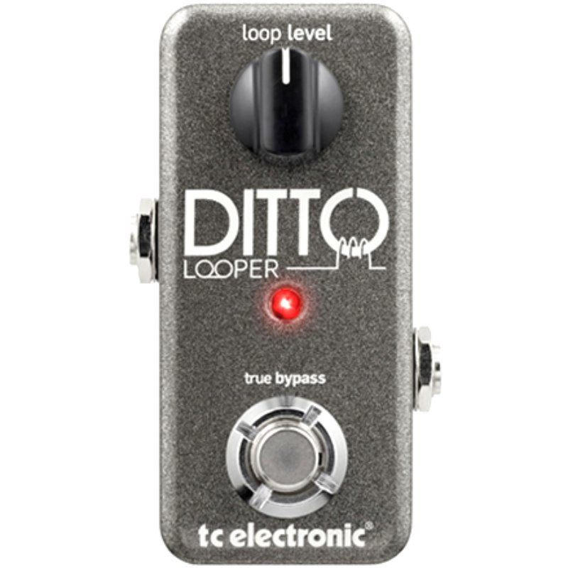 TC Electronic Ditto Looper 디토 루퍼